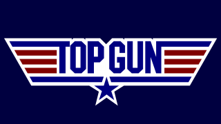 top gun icon photo